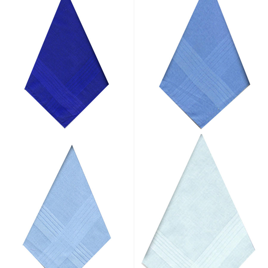 Mens Assorted Blue Dyed Satin Border Handkerchiefs